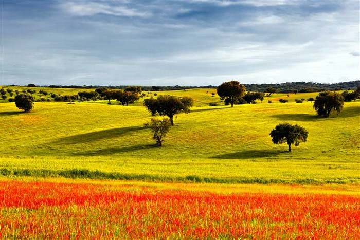 Let your spring travel in Europe take you to Alentejo portugal