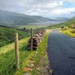 Scenic road in the hills of Connemara
