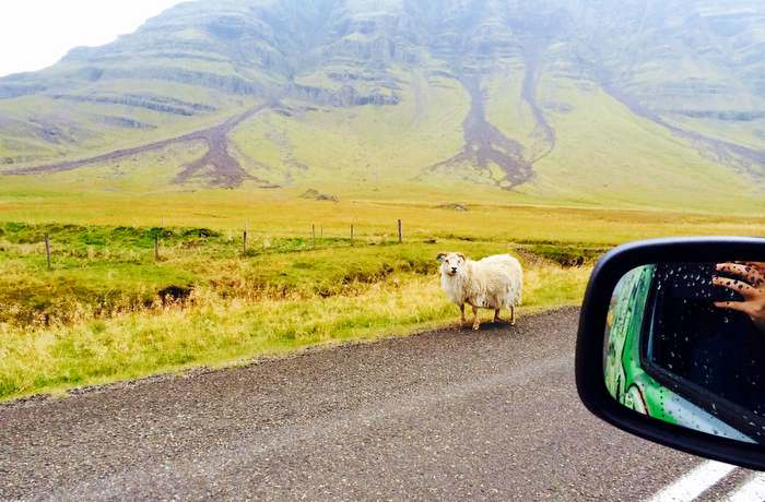 Some typical scenery as you discover Iceland in a camper-van