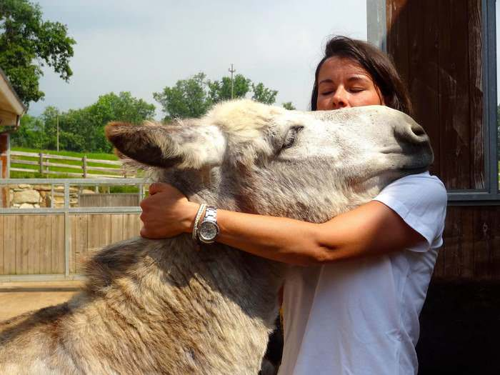Lots of affection at Italy's Donkey Refuge