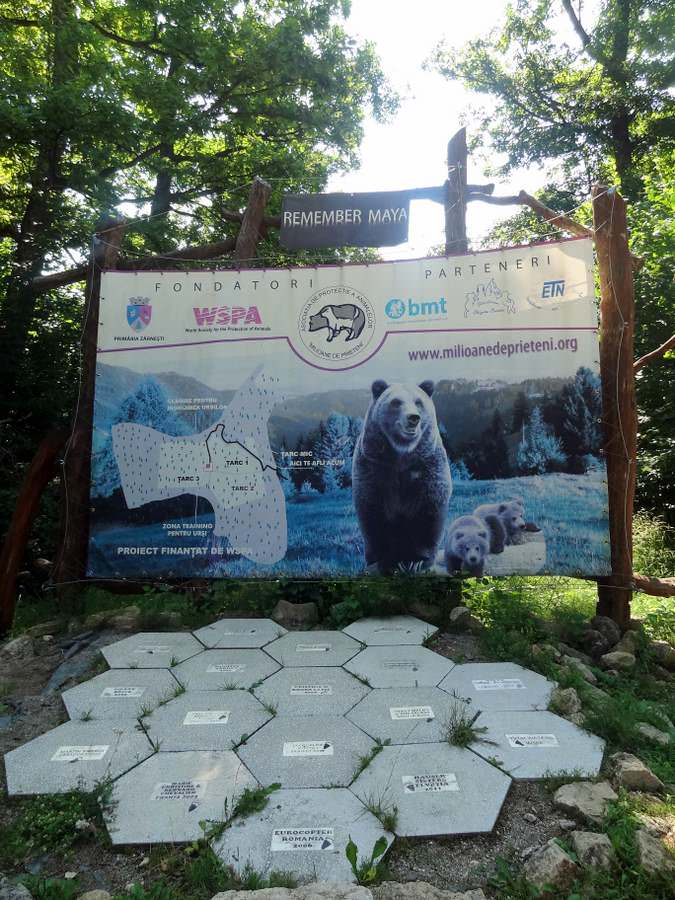 memorial to Maya at the LiBearty bear Sanctuary