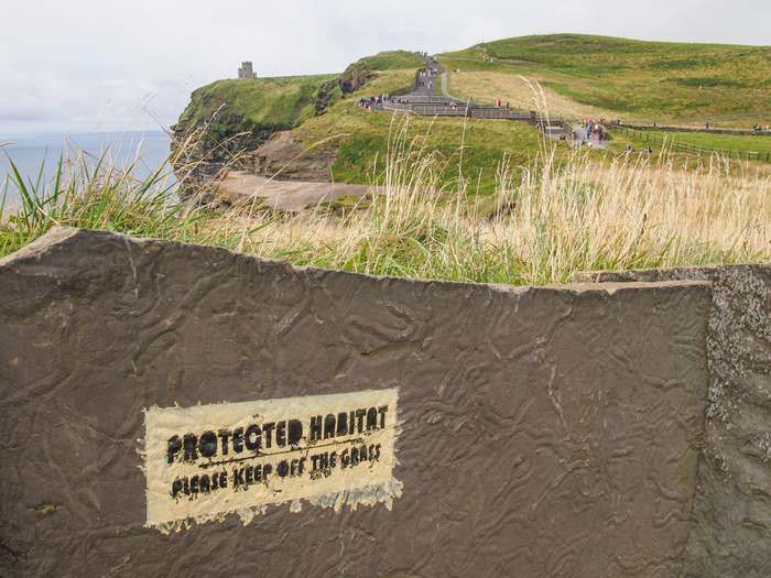 Protected habitat, Cliffs of Moher